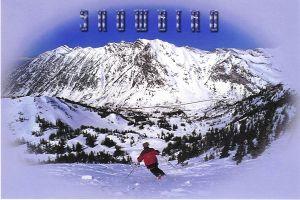 Snowbirdpostcard