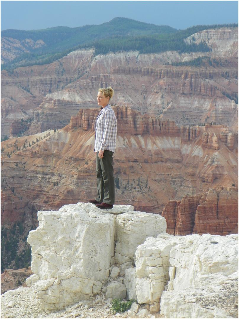 national parks attendance