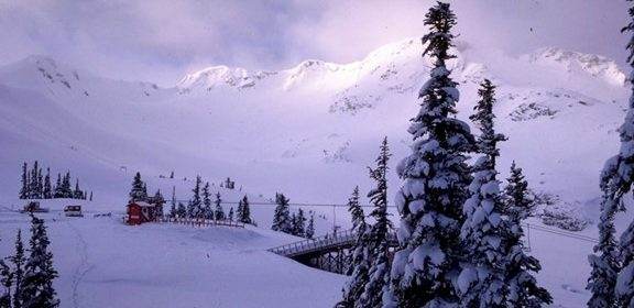 Courtesy Whistler Blackcomb Resort