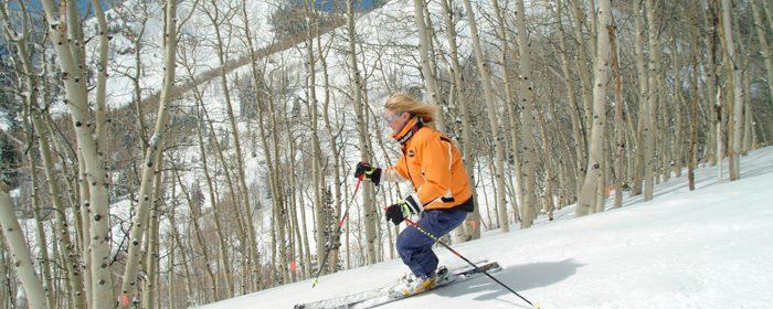 ski words