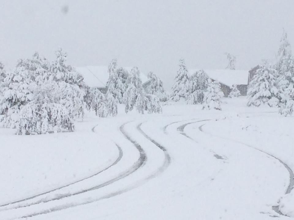 Ski area Opening Dates