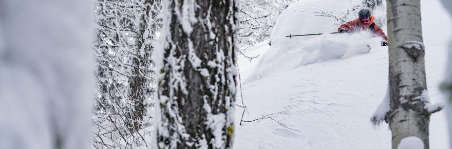 warren miller ski
