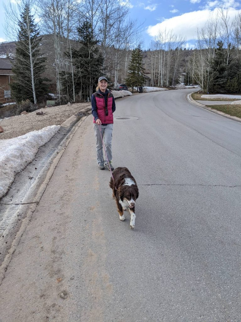 using a six foot leash with your canine during covid